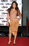Vida Guerra  2005 Vibe Awards - Arrivals