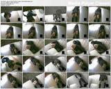 http://img23.imagevenue.com/loc149/th_67187_SecretToiletCameraVoyeurGirlsMasturbation.avi_thumbs_2013.11.09_05.32.24_123_149lo.jpg