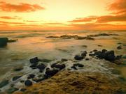 Beautiful Beaches Of The World HQ Wallpapers Th_26257_tduid1721_Forum.anhmjn.vom_HawaiianSeascapeHawaii_122_432lo