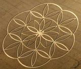 http://img23.imagevenue.com/loc868/th_10738_crop-circles_4_122_868lo.jpg
